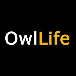 owllife